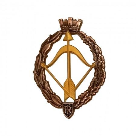 Distintivo Spilla da Camicia o Giacca Aeronautica Militare Caccia Oro Prodotto Ufficiale Art. AM0160PCACCIAOR