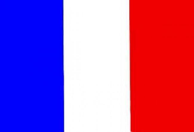 Bandiera Francia 100x150 Eco Art.Eco-Francia