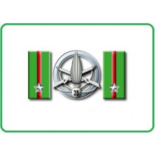 Mostrine Alamari Giacca o Camicia Esercito Italiano 28° BTG Fanteria Pavia   Art.NSD-A-FP