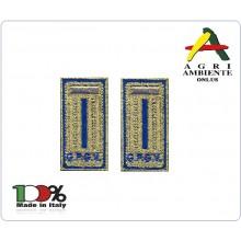 Alamari Mostrine Polo con Velcro cm 2.50x5.00 Fondo Oro Scritta Blu G.P.G.V. Agri Ambiente Art.NSD-AGRI-10