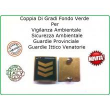 Coppia Gradi Guardie Giurate  Ittiche Venatoria Vigilanza Ambientale Provinciale Assistente Capo Oro Art.IT-6