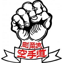 Adesivo o Vetrofania Pugno Kung Fu Art.NSD.ad.pugno