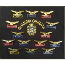 Spilla Distintivo di Specialità Aquila Guardie Giurate Vigilanza GPG IPS Security  Decidi il Ruolo Art.718-TUS