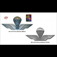 Spilla Brevetto Camicia Paracadutista Militare o Civile da Camicia Prodotto Ufficiale Italiano Art.NSD-PARM-CAM