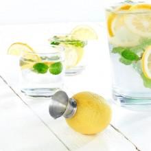 Versatore per Succo di Limone Spremi Limone Spremilimone Professionale Accaio Cilio 293180  Art. 5111319
